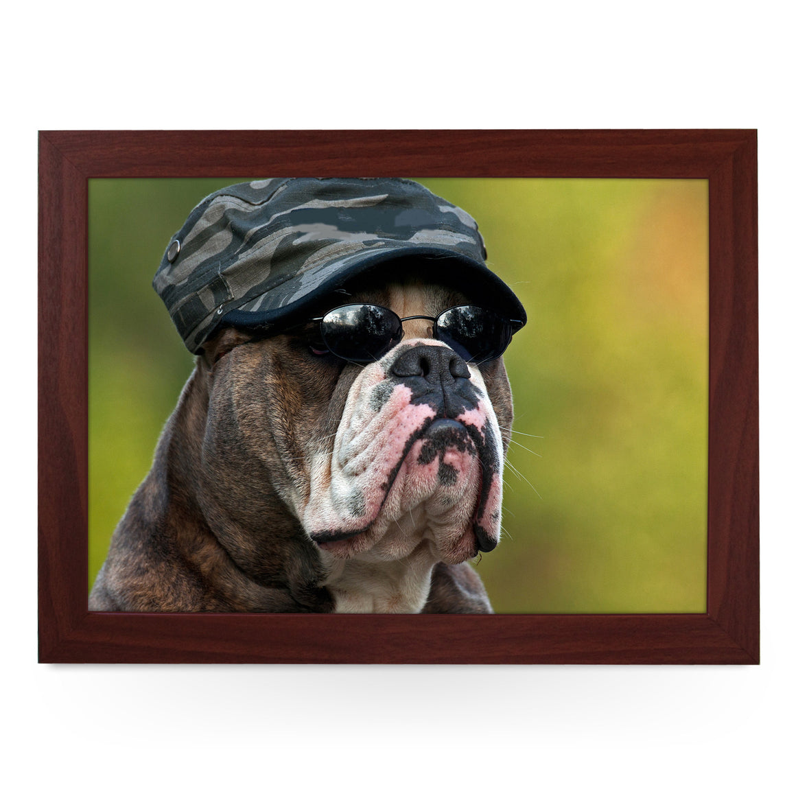 Dressed Up Army Bull Dog Lap Tray - L0152