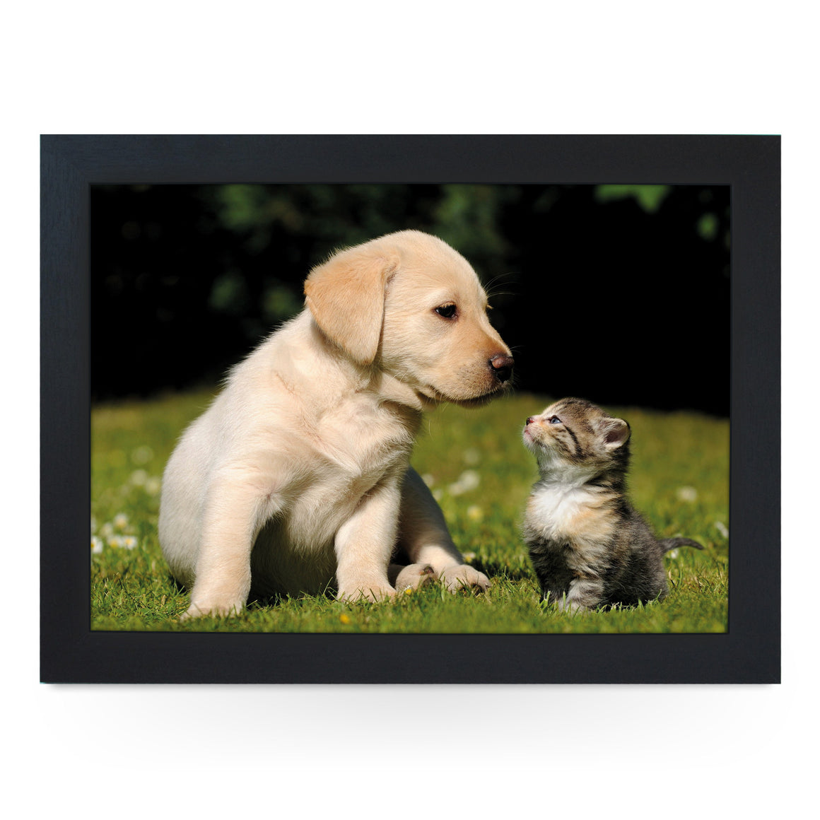 Puppy & Kitten Lap Tray - L0219