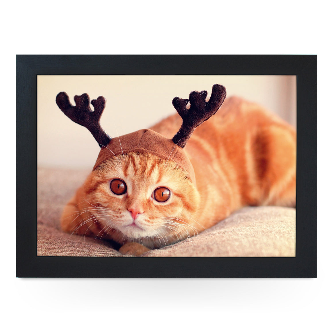 Cat Dressed As A Reindeer Lap Tray - L0233