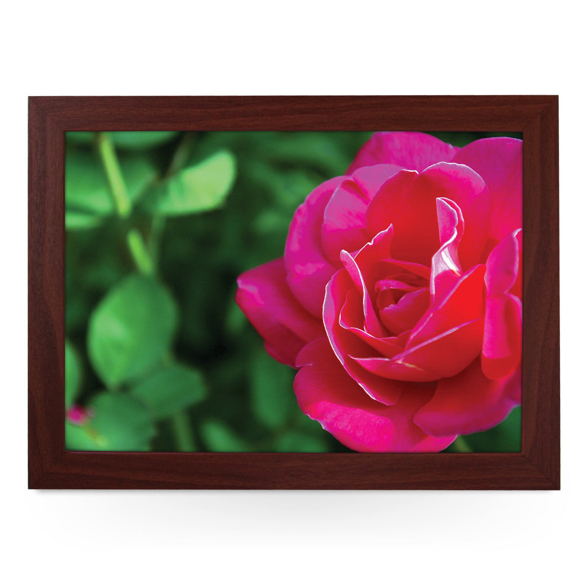 Fuschia Rose Flower Lap Tray - L0372