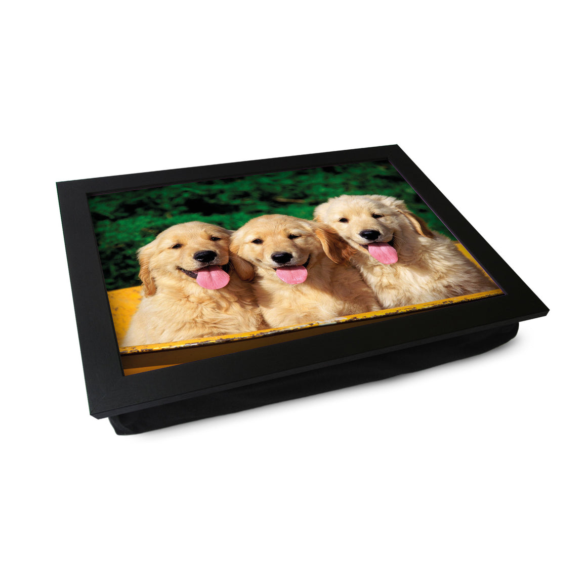 Three Golden Retriever Puppies In A Tub Lap Tray - L0397