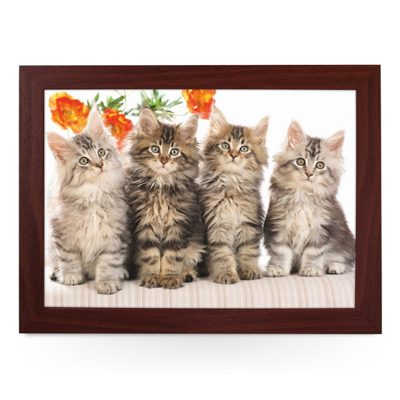 Cute Long Haired Kittens Lap Tray - L0400
