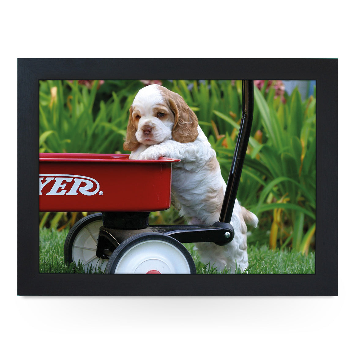 Cocker Spaniel Puppy Lap Tray - L0402