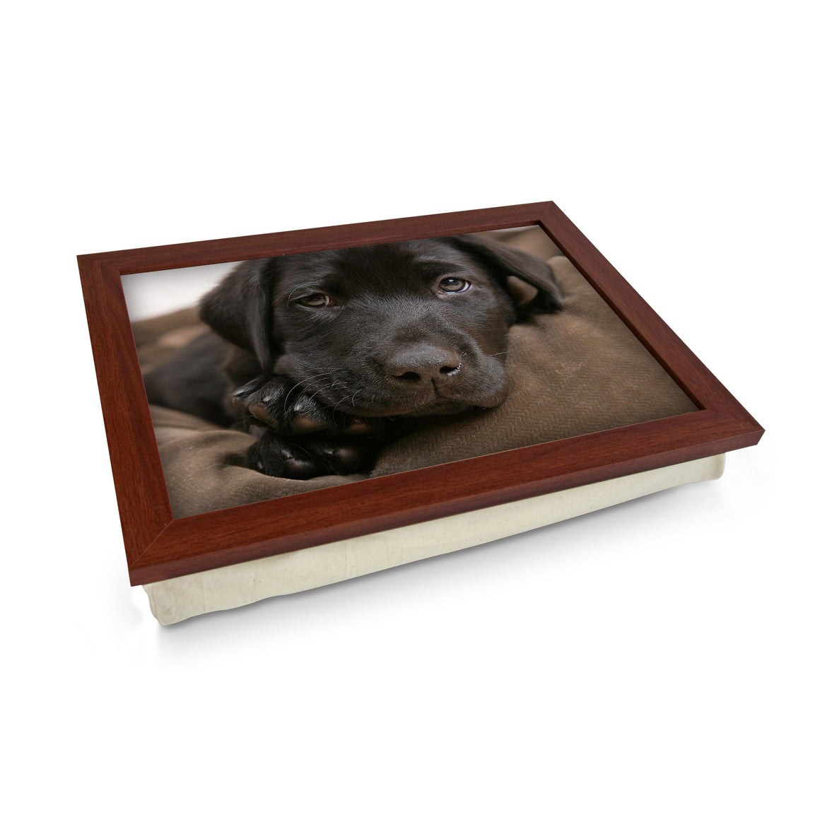 Chocolate Labrador Puppy Lap Tray - L0587