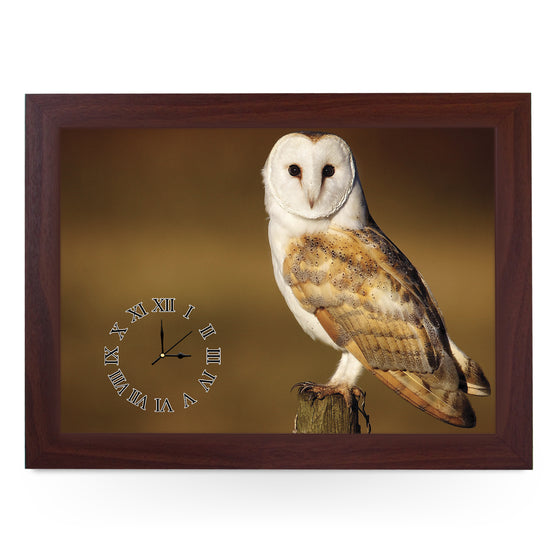 Wooden Picture Frame Clock. CL421 Barn Owl