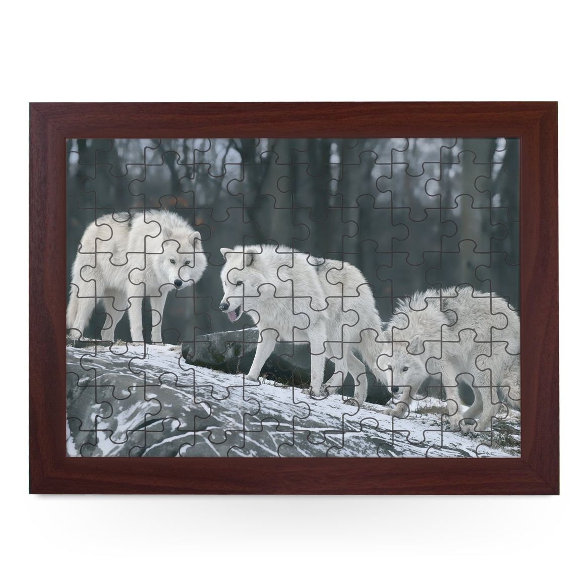 Three White Wolves Jigsaw Puzzle with Frame (180pcs)