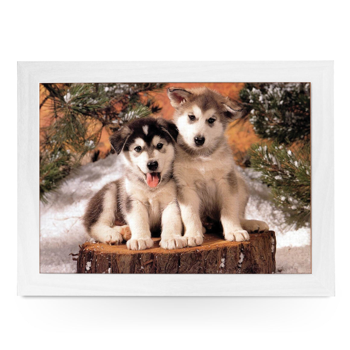Husky Puppies On Tree Stump Lap Tray - L0371