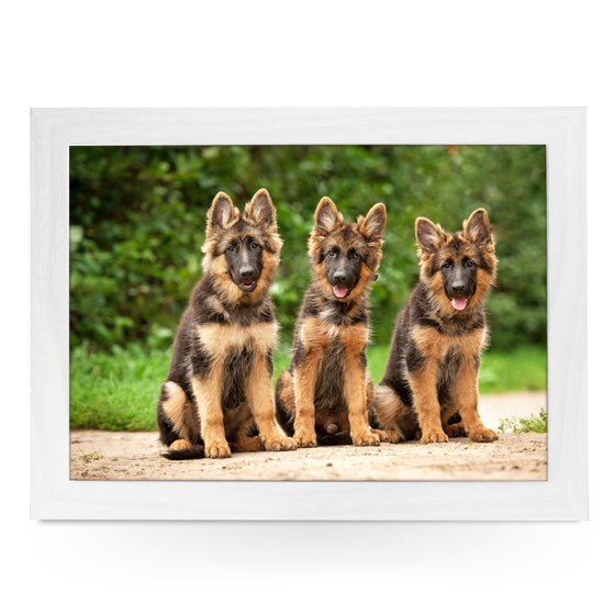German Shepherd Puppies Lap Tray - L0580
