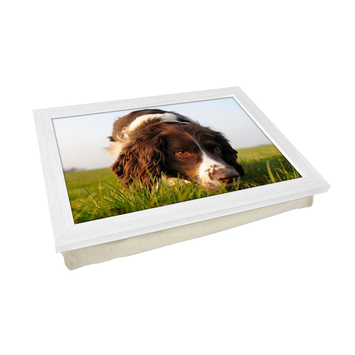 Brown Cocker Spaniel Dog Lap Tray - L0583