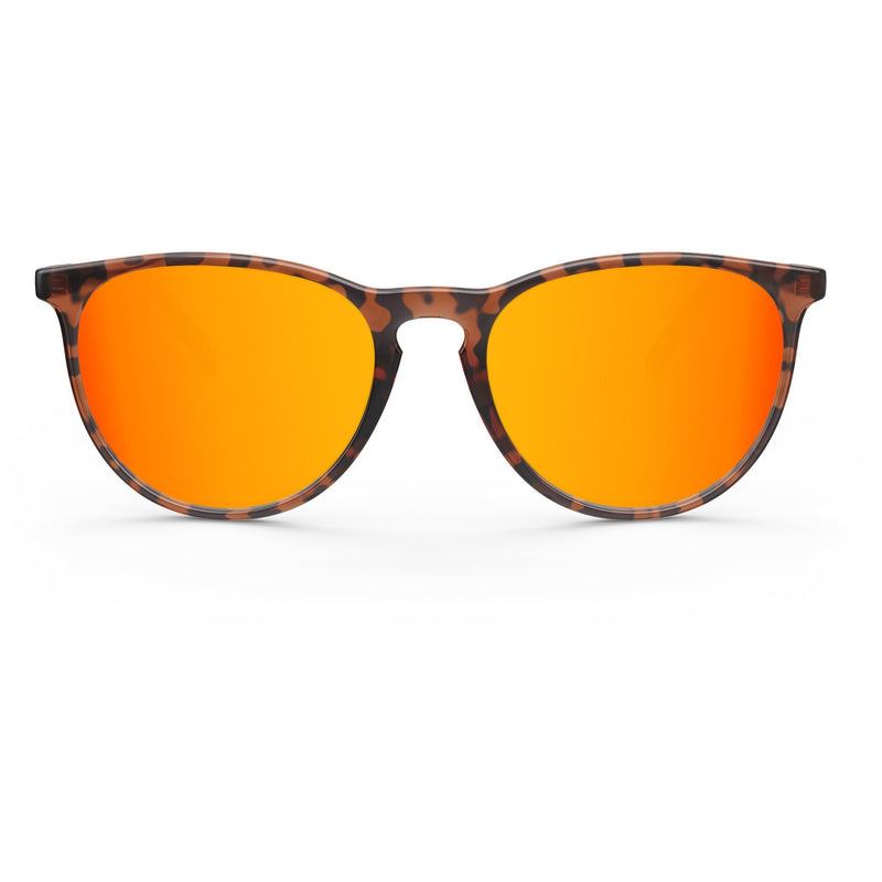 Elba // Orange Tortoise - Blueprint Eyewear - 2