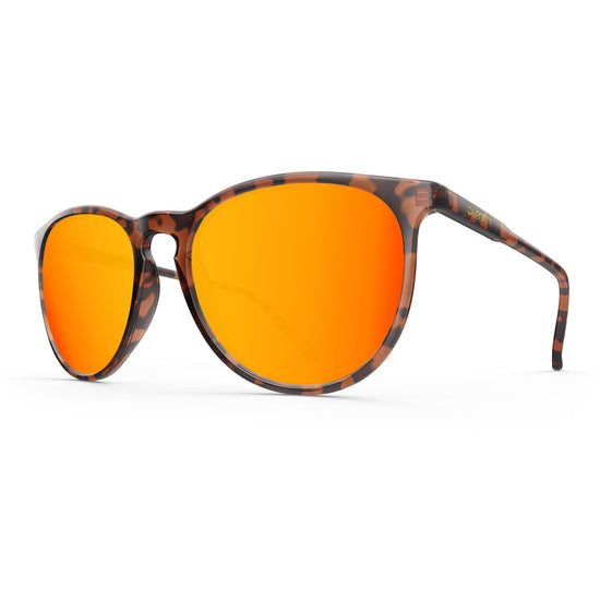 Elba // Orange Tortoise - Blueprint Eyewear - 1