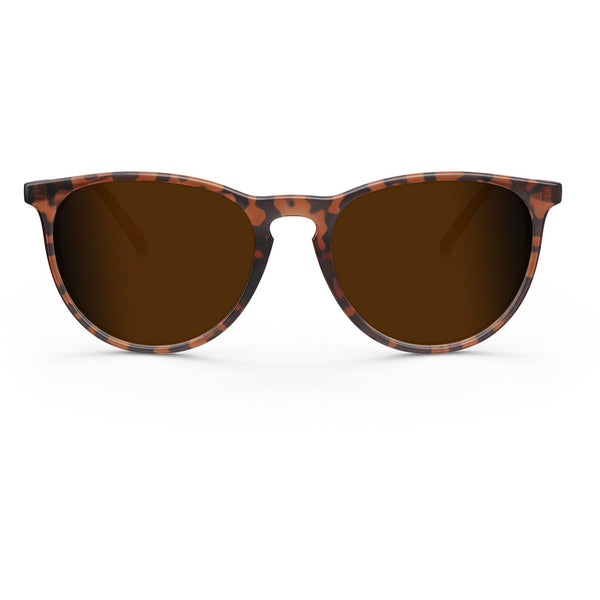 Elba // Chocolate Tortoise - Blueprint Eyewear - 2