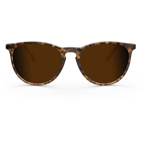 Elba // Chocolate Havana - Blueprint Eyewear - 1