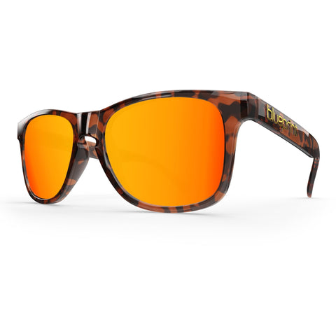 Noosa // Orange Tortoise - Blueprint Eyewear - 1