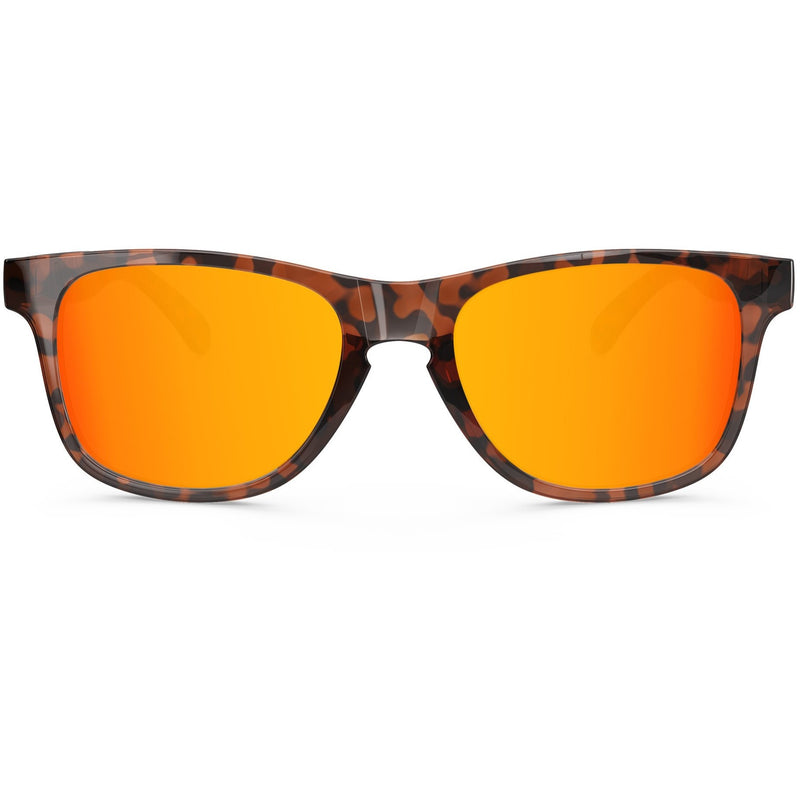 Noosa // Orange Tortoise - Blueprint Eyewear - 2