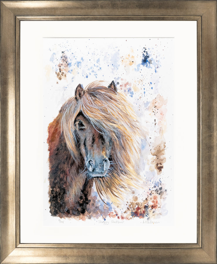 Shaggy Shetland Limited Edition Print by Lesley Palmer Framed Bronze
