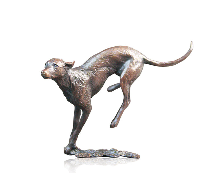 Lurcher Solid Bronze Sculpture by Michael Simpson