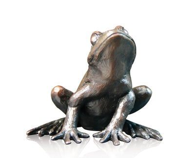 Small Frog Alert Solid Bronze Sculpture by Keith Sherwin