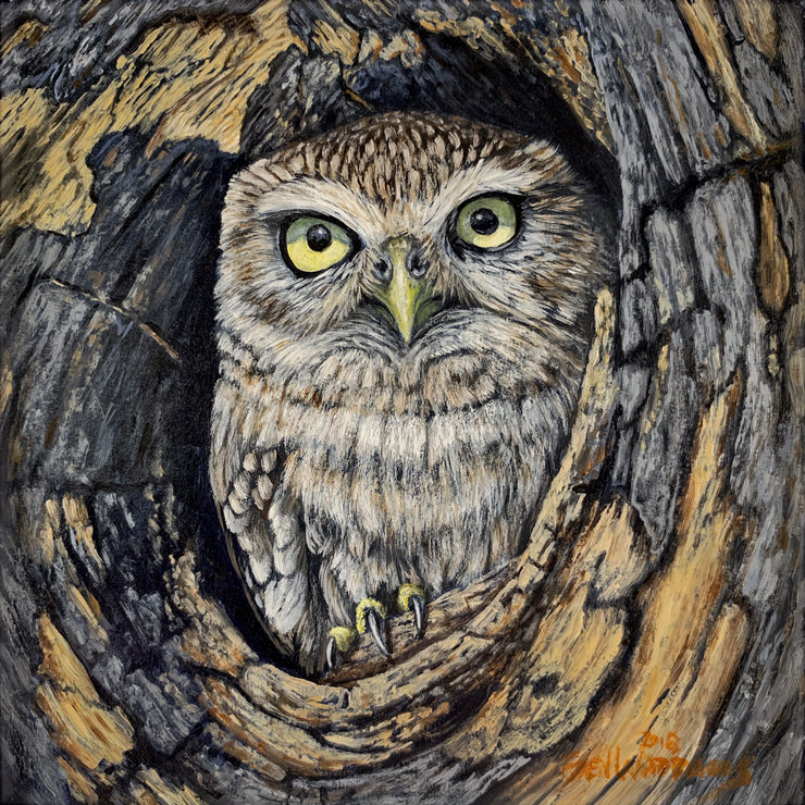 An Owl's Home Is His Castle Original Painting by Ben Waddams