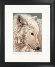 Spirit of the North Limited Edition Print by Sue Payton Framed Black