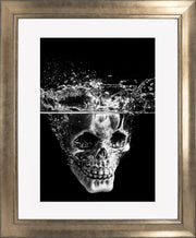 Splash Limited Edition Print by Neil Murray Bronze Frame
