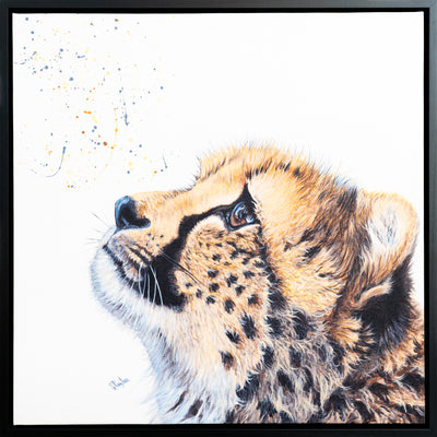 Cheetah Cub Framed Print by Sue Payton