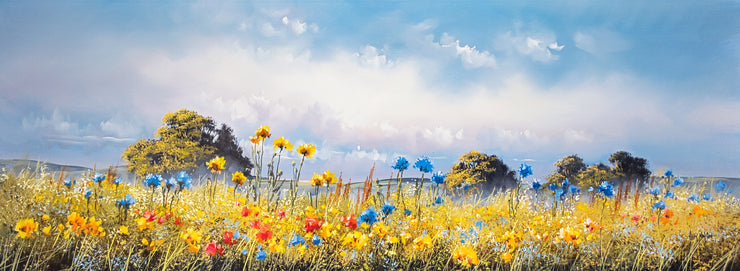 Flower Meadow by Allan Morgan