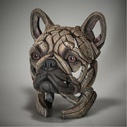 French Bulldog Bust - Fawn from Edge Sculpture by Matt Buckley