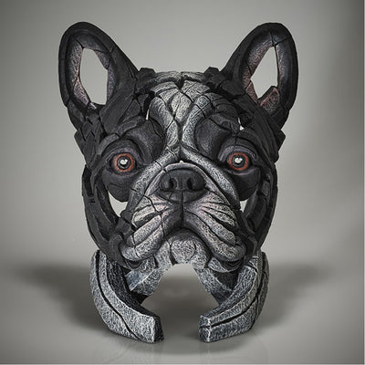 French Bulldog Bust - Pied from Edge Sculpture by Matt Buckley