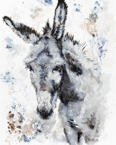 Gentle Jenny Limited Edition Print by Lesley Palmer