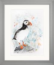 Perching Peter limited edition print by Lesley Palmer Framed Grey
