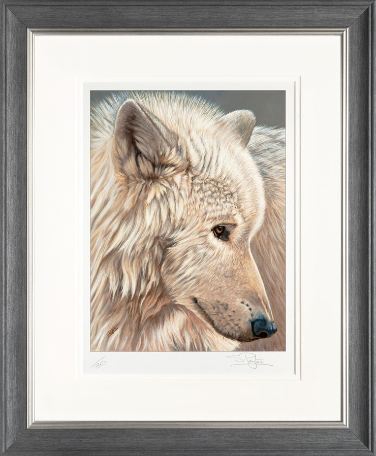 Spirit of the North Limited Edition Print by Sue Payton Framed Grey Silver
