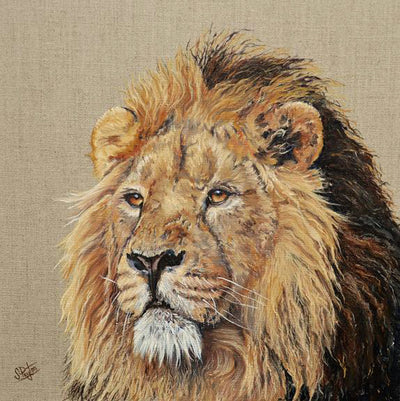 Lion by Sue Payton