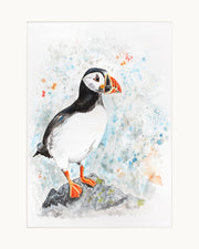Perching Peter limited edition print by Lesley Palmer Mounted