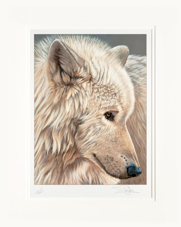 Spirit of the North Limited Edition Print by Sue Payton Mounted