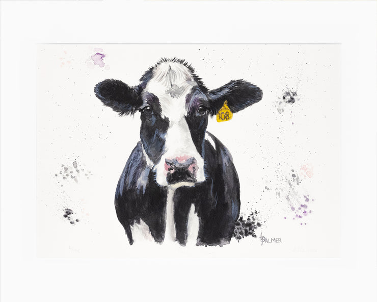 Dairy Daisy Limited Edition Print by Lesley Palmer Mounted
