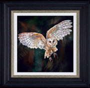 Night Flight limited edition print by Debbie Boon