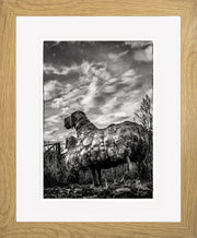 Follow Me Limited Edition Print by Neil Murray Oak Frame