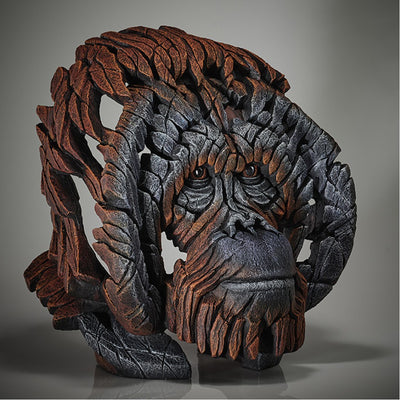 Orangutan Bust from Edge Sculpture by Matt Buckley