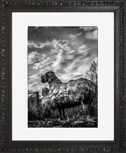 Follow Me Limited Edition Print by Neil Murray Ornate Black Frame