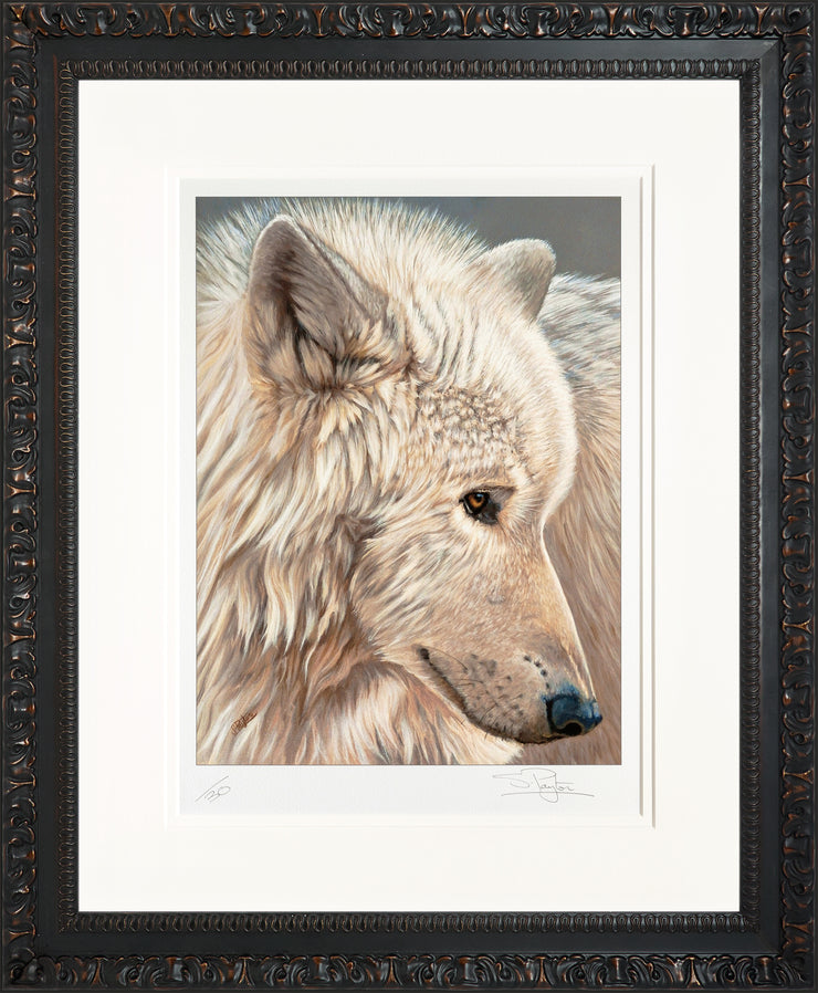 Spirit of the North Limited Edition Print by Sue Payton Framed Ornate Black