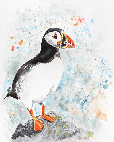 Perching Peter limited edition print by Lesley Palmer