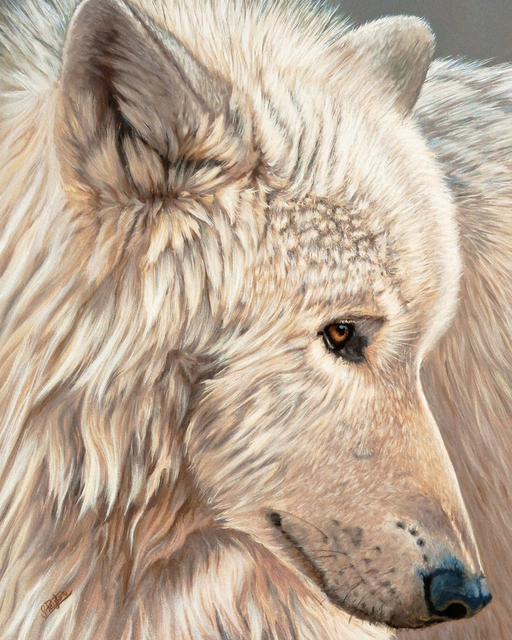 Spirit of the North Limited Edition Print by Sue Payton