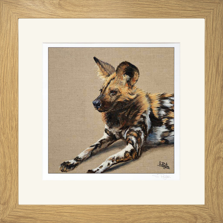 Wild Dog by Sue Payton Limited Edition Print Framed Oak