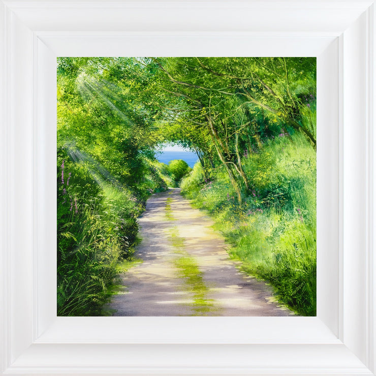 Summer Swathes limited edition framed print by Heather Howe
