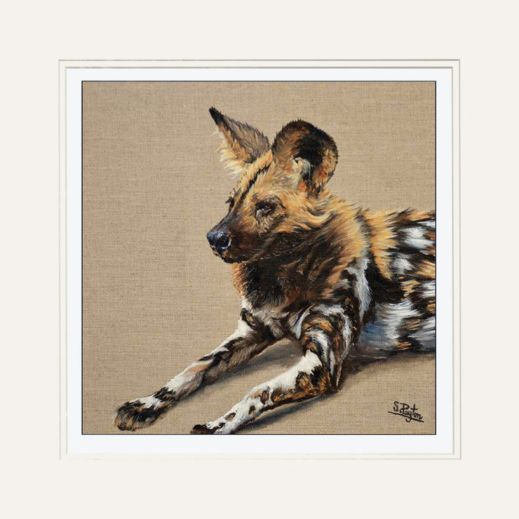 Wild Dog by Sue Payton Limited Edition Print Mounted