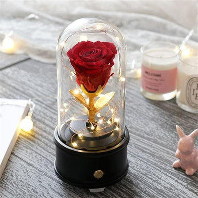 Preserved Rose Flower in Glass Dome