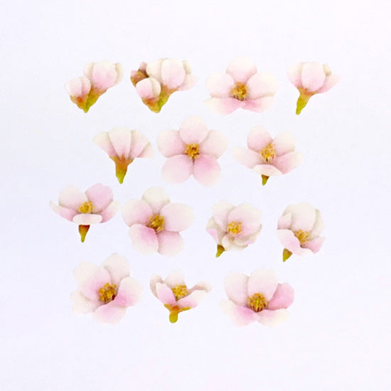 Bande DIY Masking Tape Stickers - Pink Blossoms