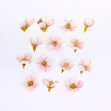 Bande DIY Masking Tape Stickers - Pink Blossoms - Decoration Stickers - bunbougu.com.au