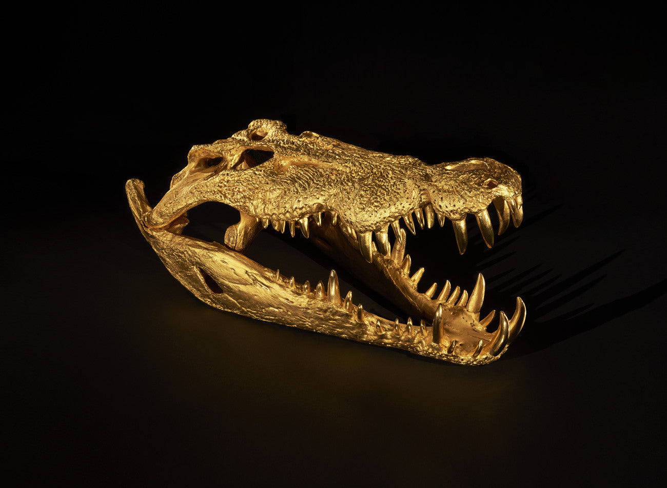 CROCODILE SKULL SCULPTURE Shop & Give Back to the World Wildlife Fund. - [Epicurus Life]